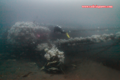 A C E Becomes Southern California S Newest Dive Site