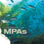 Making Sense of MPAs: A Guide to California's Marine Protection Areas