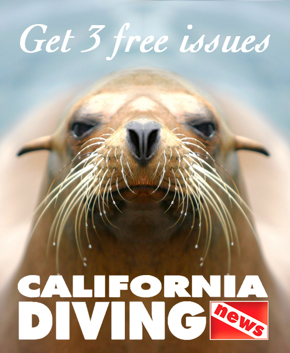 California Diving News - July 2016