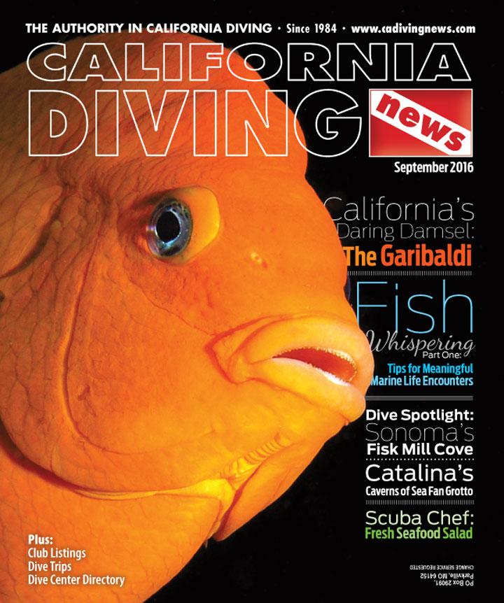 September CDN June 2016 cover