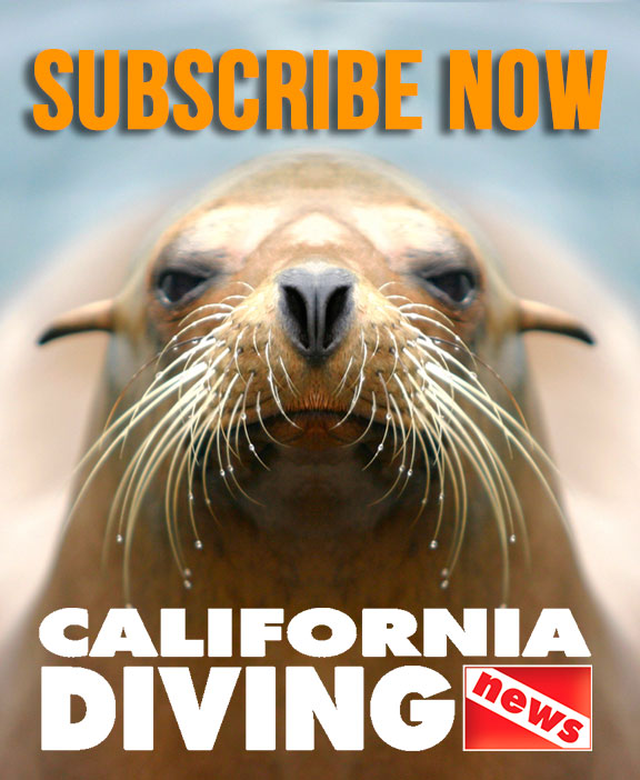 Subscribe to California Diving News