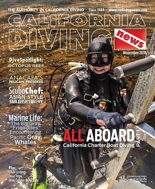 CDN November 2016 cover