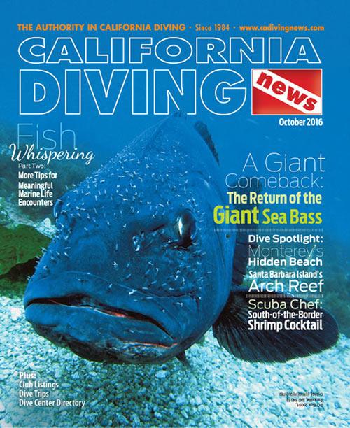 California Diving News - October 2016