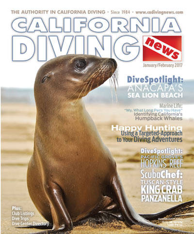 California Diving News - January/February 2017