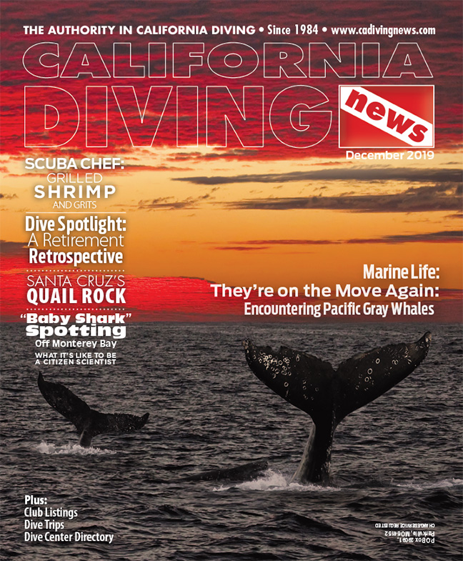 California Diving News - December 2019