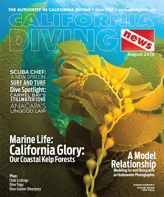California Diving News - August 2019