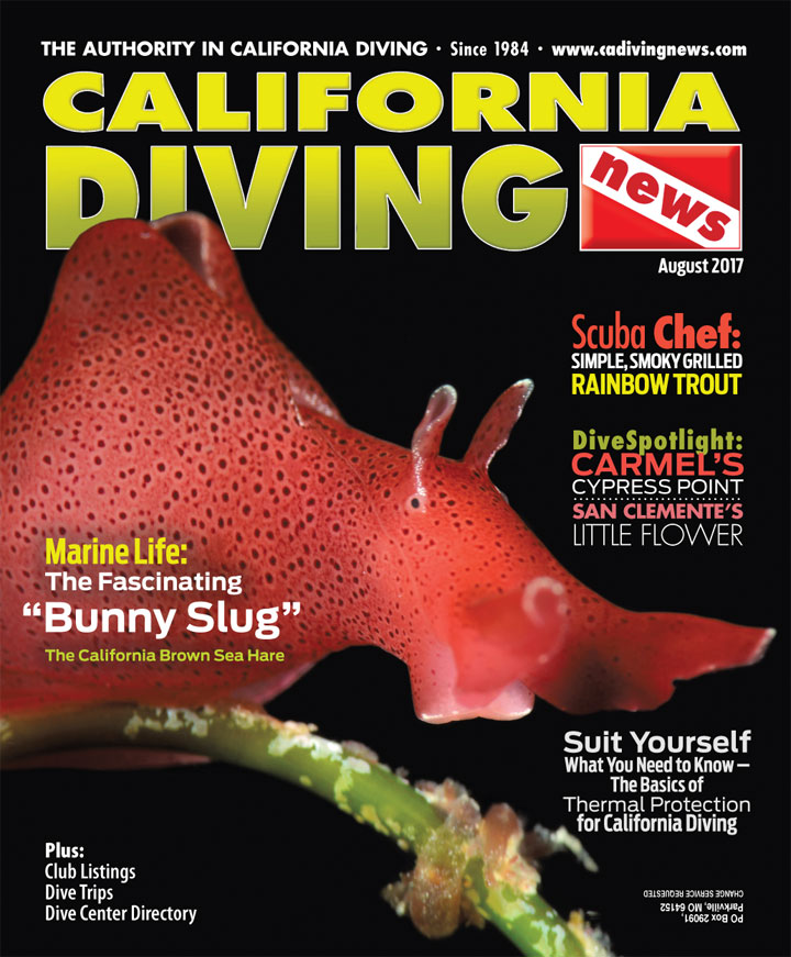 California Diving News - August 2017
