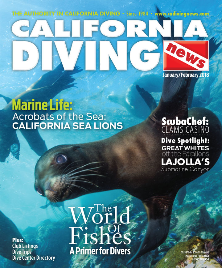 California Diving News - November 2017