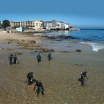 A Cool Dive Off Cannery Row: Enjoying San Carlos Beachs