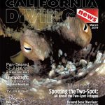 Welcome to California Diving News – Your Resource for Diving the Golden State