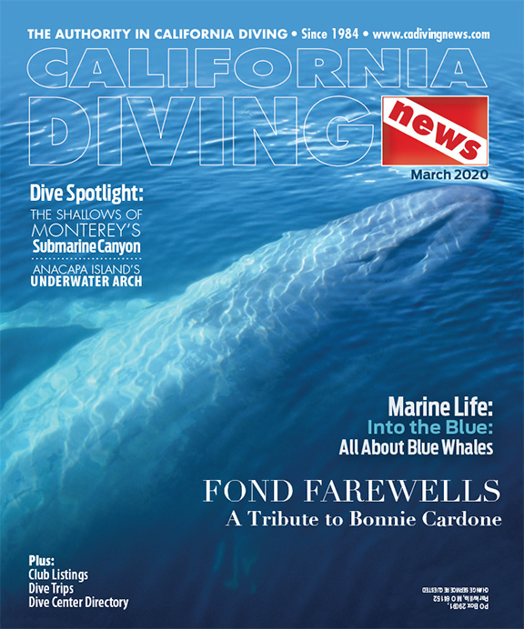 California Diving News - March 2020