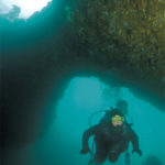 A Freak of Nature: Anacapa Island's Underwater Arch